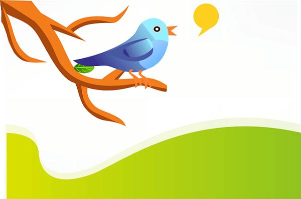 Twitter-like website - Parler app